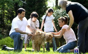 Family Training Before Your Puppy Comes Home