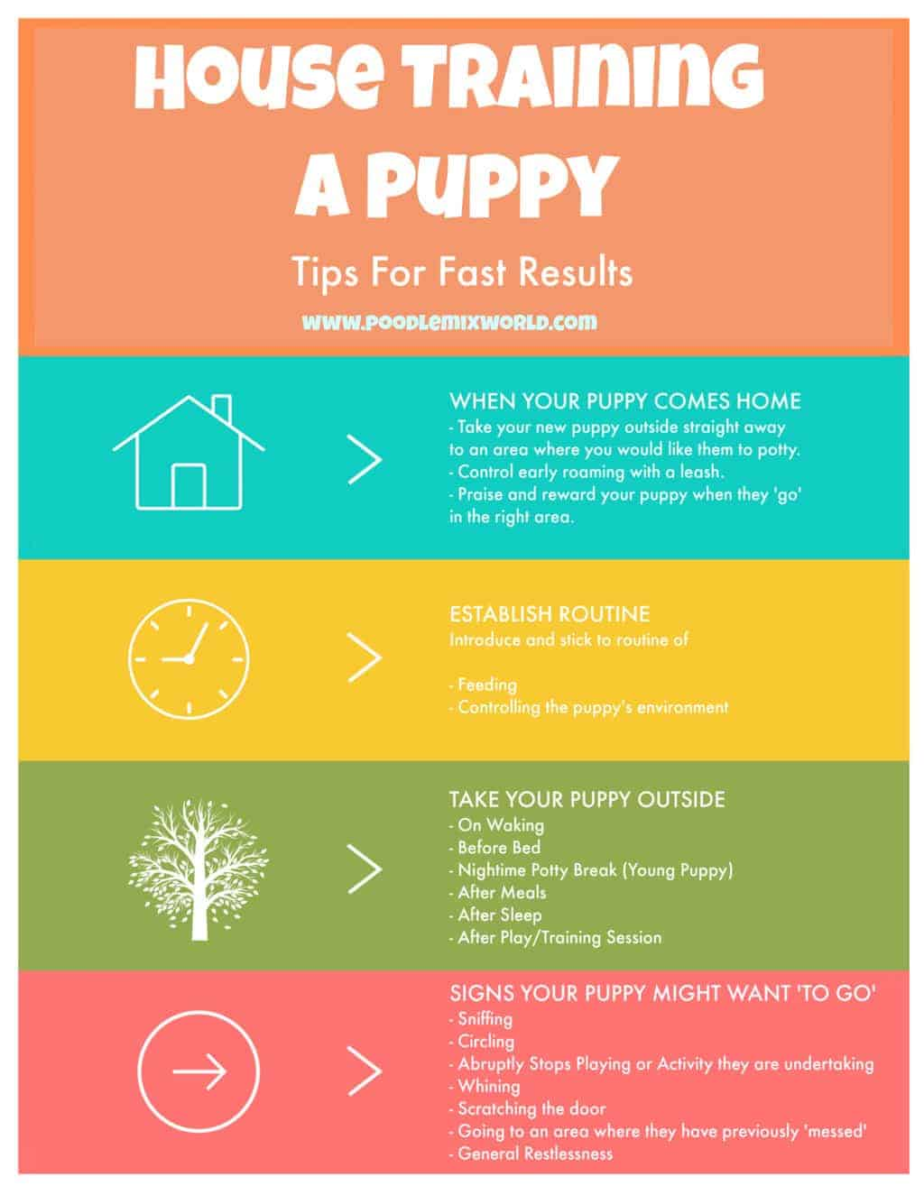 Infographic showing tips on how to house train a dog quickly