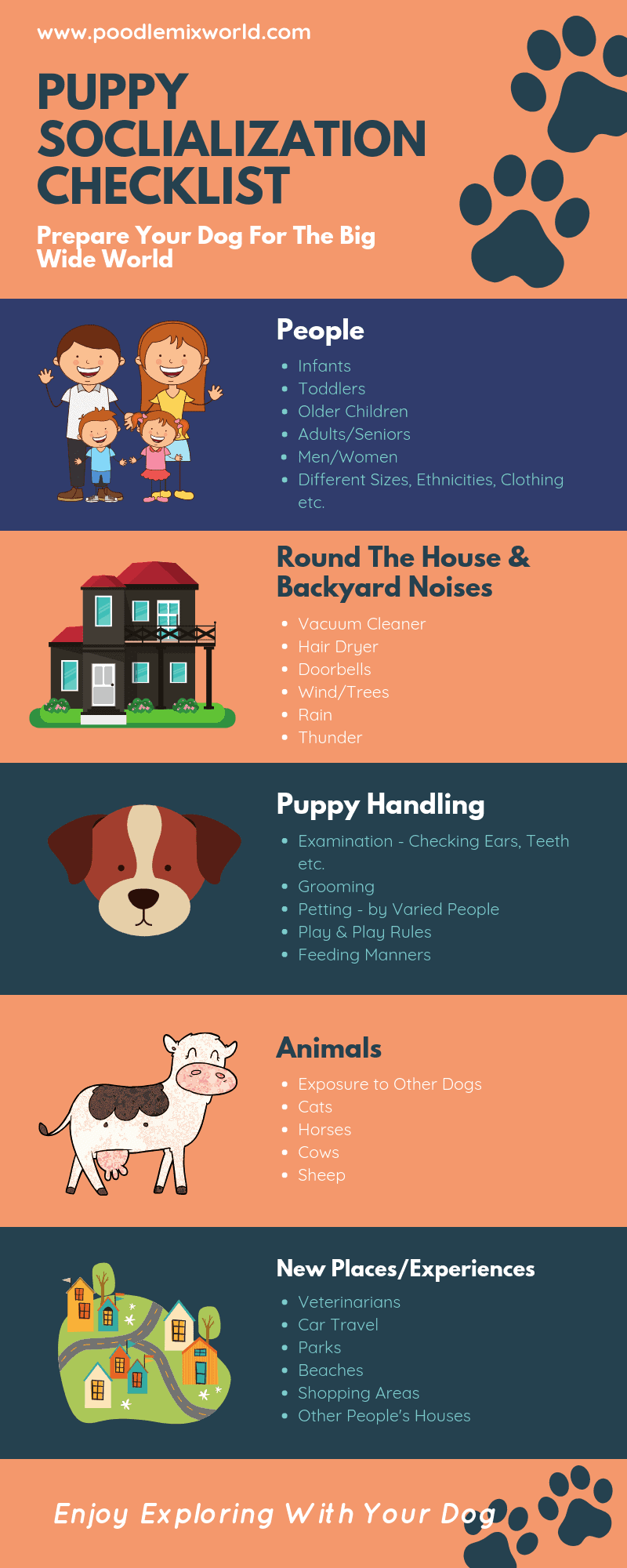 Puppy Socialization Checklist - Areas that can be targeted to effectively socialize your puppy
